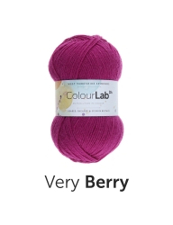 WYS -West Yorkshire Spinners ColourLab DK – Very Berry – 647